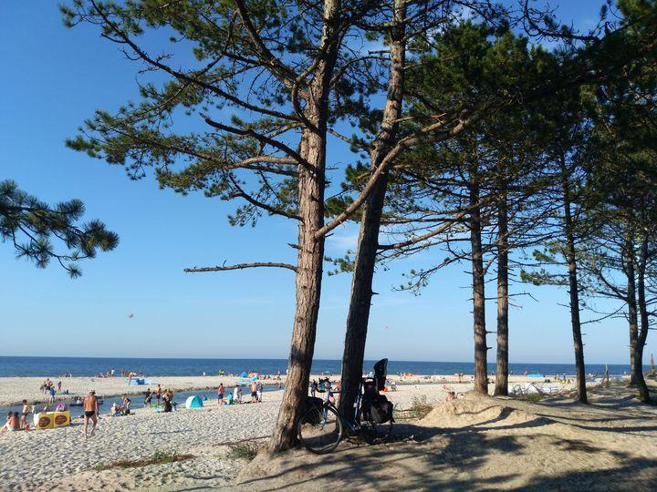 Bałtycka plaża, ujście rzeki Piaśnicy, Dębki