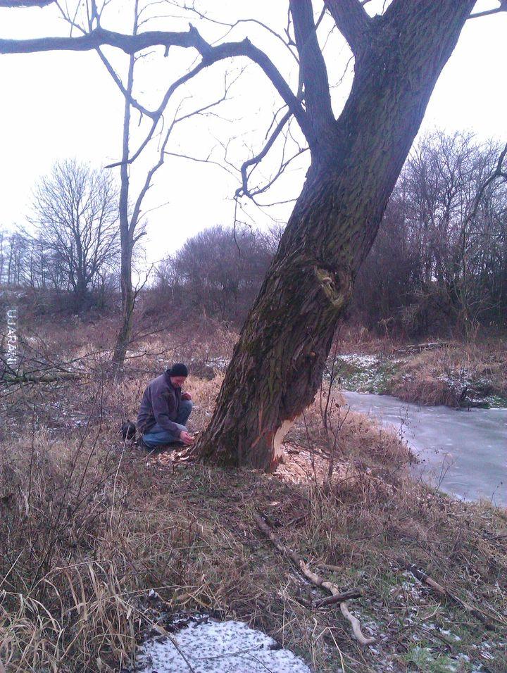 Wypad z tata nad rzekę