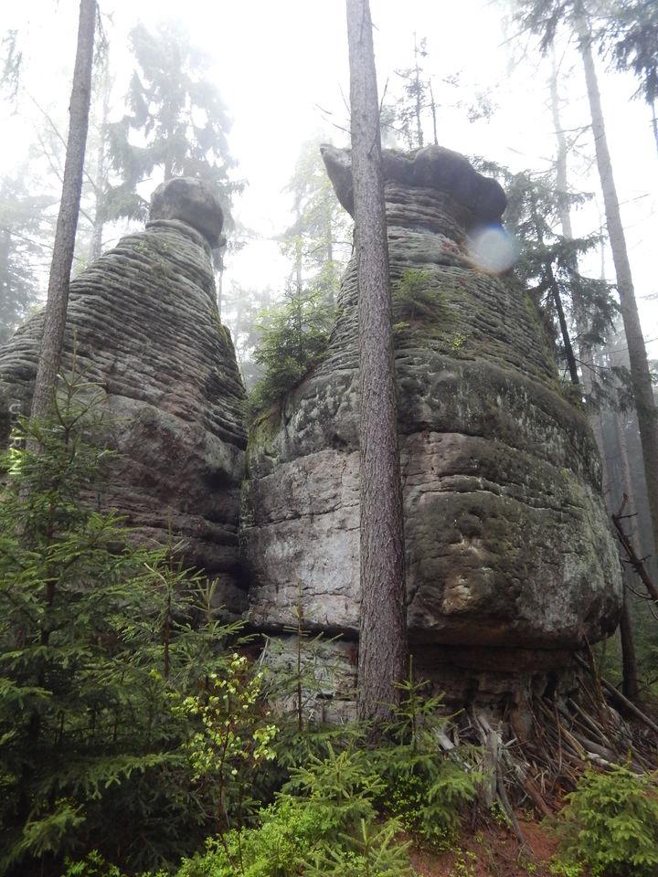 droga na skalne grzyby