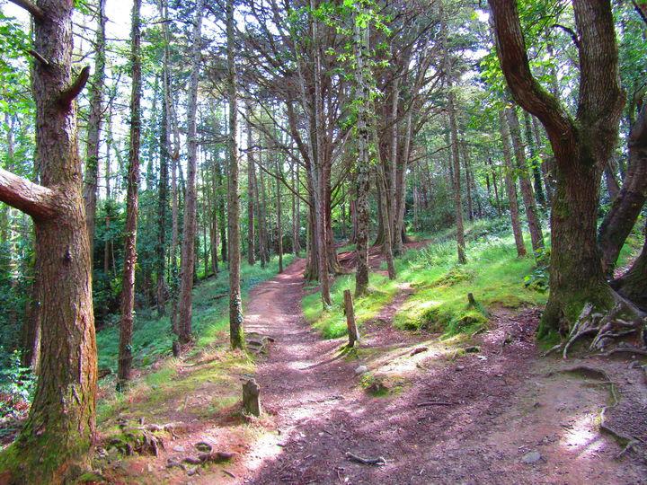 Spontaniczny spacer. Irlandia #własne