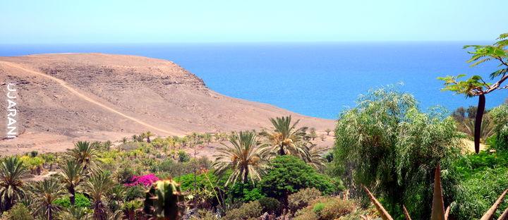 Fuerteventura.