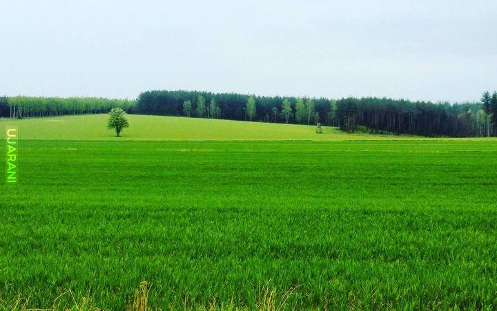 Podlasie, niemalże Białoruś