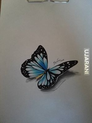 Motylek- markery chameleon