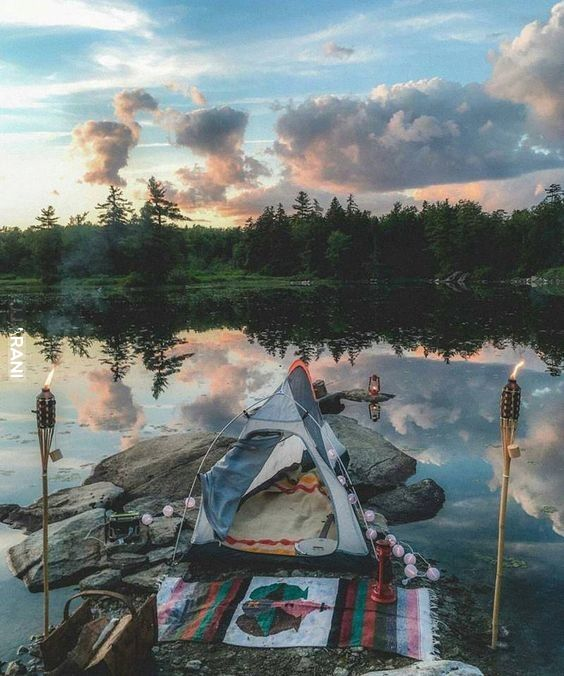 17. lipca - Międzynarodowy dzień kopulacji pod gołym niebem