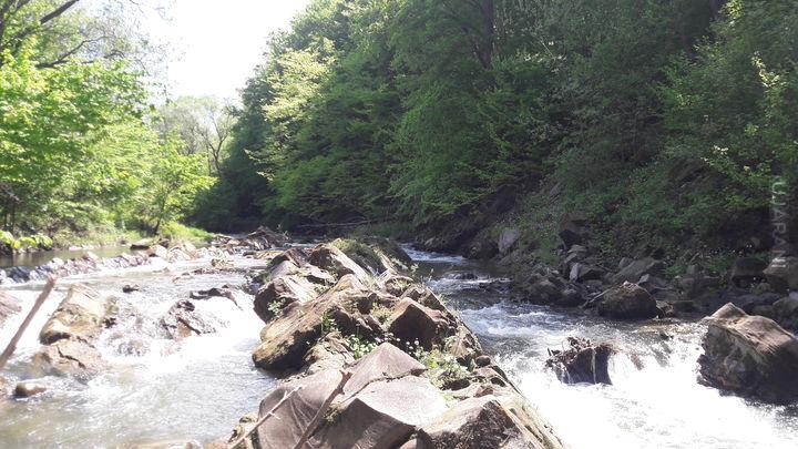 taki spacerek w górę rzeki
