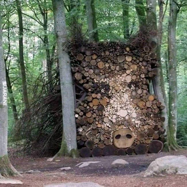 Cerber leśny