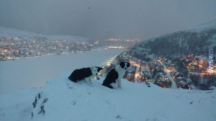 Hammerfest godz 12.00 w południe podczas nocy polarnej, wesolych świat