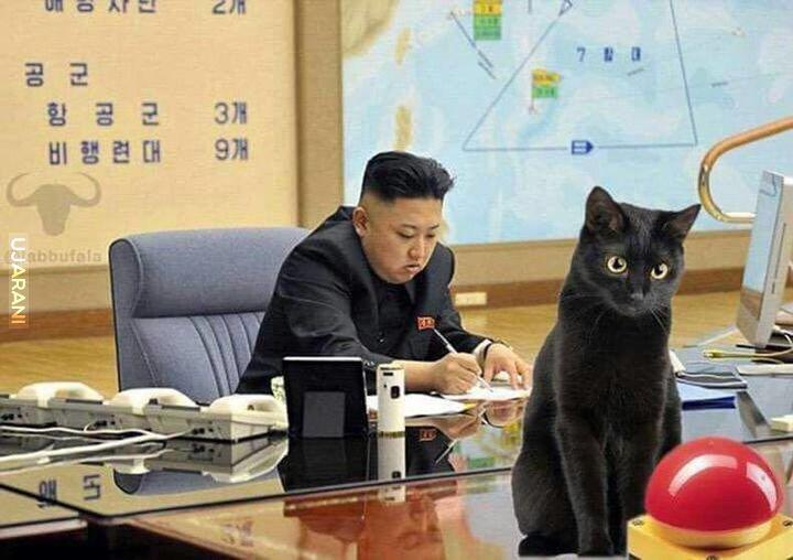 Tymczasem w Korei Północnej