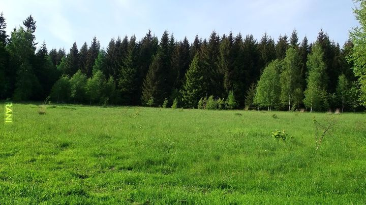 Czarna Góra i okolice