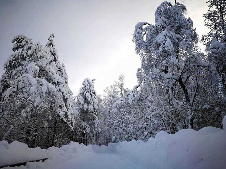 Tyle sniegu najebalo