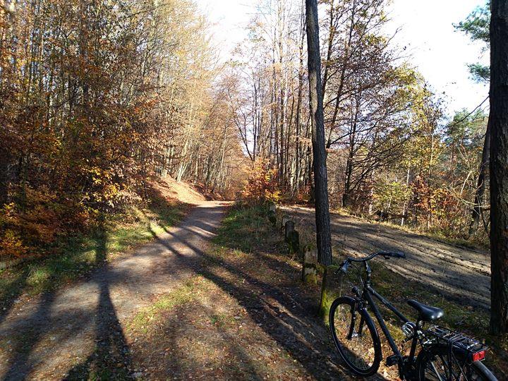 Trójmiejski Park Krajobrazowy szlaki rowerowe