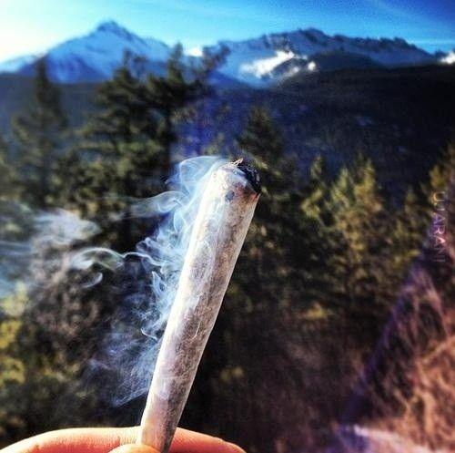 joint w plenerze ;>