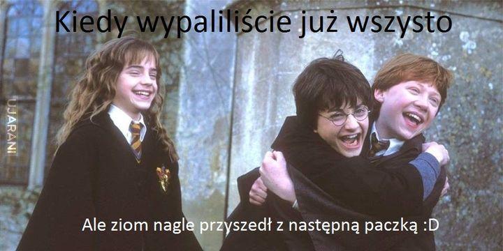 Zjary Potter