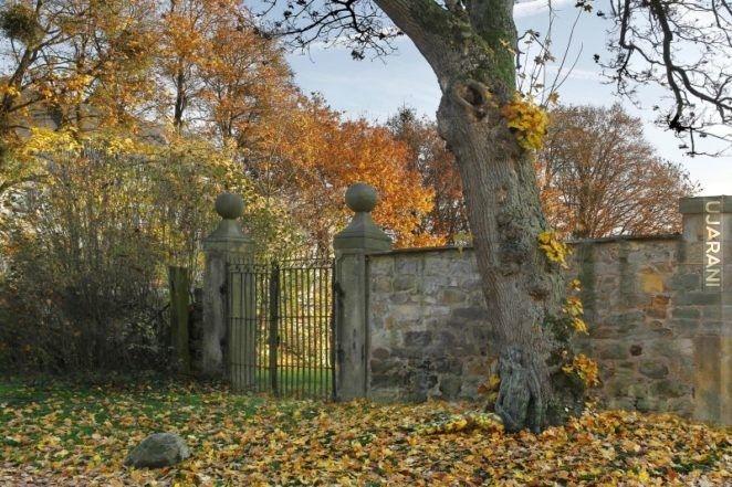 Jesienny widok, stara brama, wielki dąb, liście i… naga kobieta.