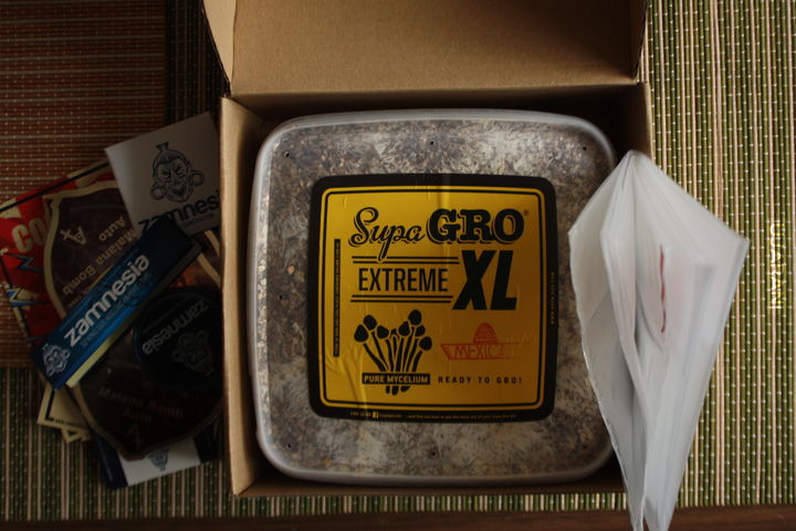 Supa Gro Extreme XL - Mexican