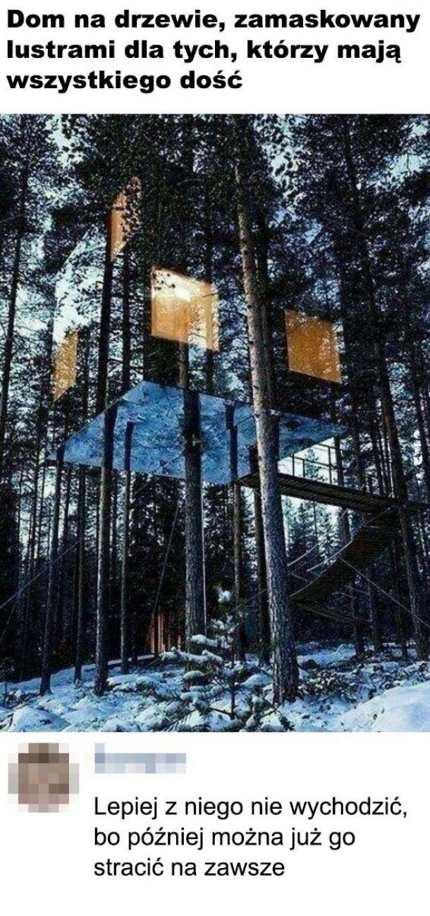 Zadanie: Znajdź domek na drzewie na obrazku