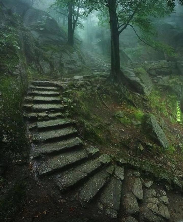 Stairway to an Old Castle, Poland.
