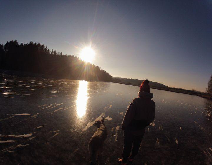 Frozen Lake Sunny Day