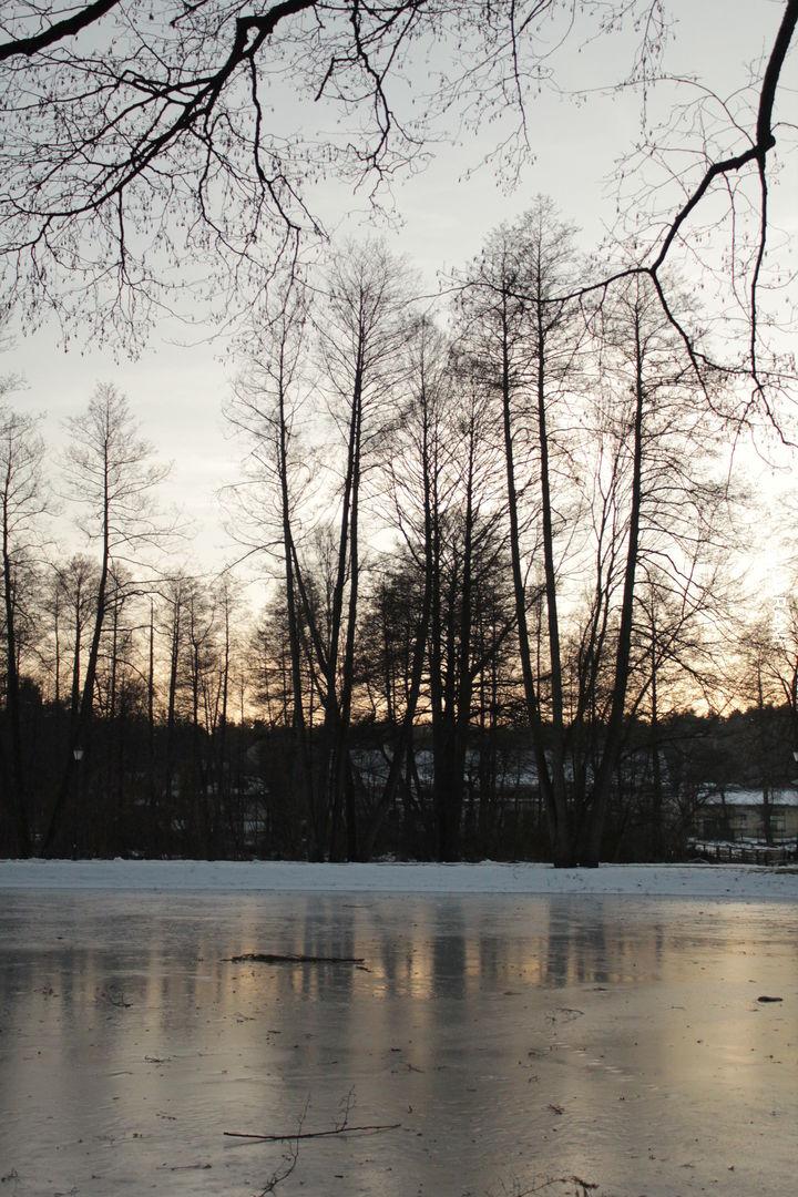 Zwierzyniec zimową porą
