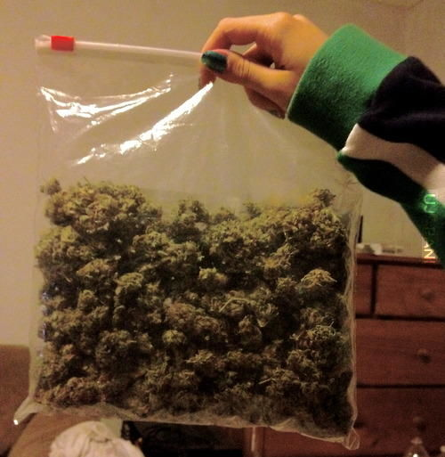 Family Guy  Bag Of Weed