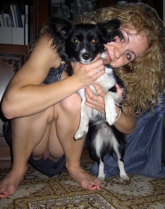 sprzedam psa, nie bardzo wiem co to za rasa, ale na foto widać