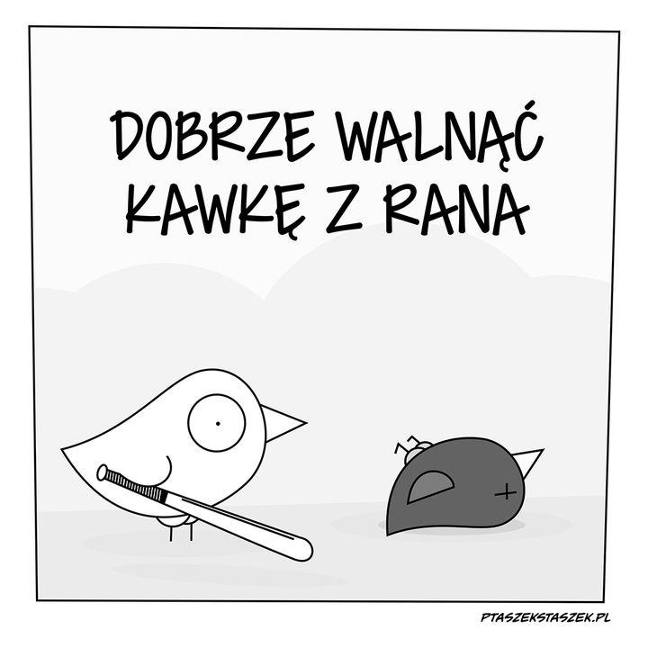 Kubeczek