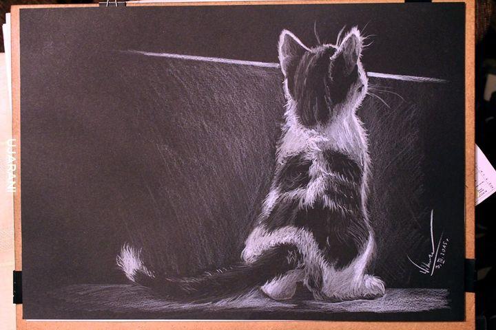Kot - rysunek własny