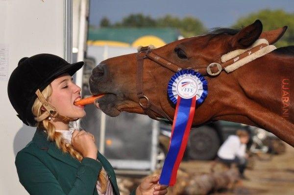 Dlaczego kobiety posiadające konia żyją 15 lat dłużej?