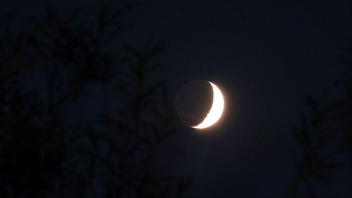 Sierp Księżyca & światło popielate