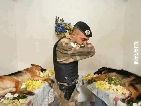 All heroes deserve respect  . !