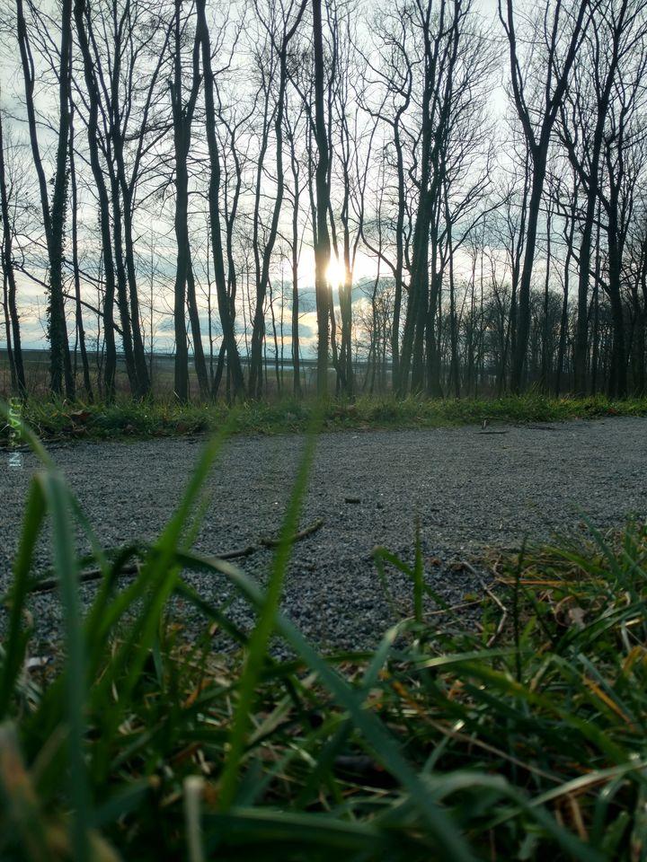 Poczuj ducha lasu...