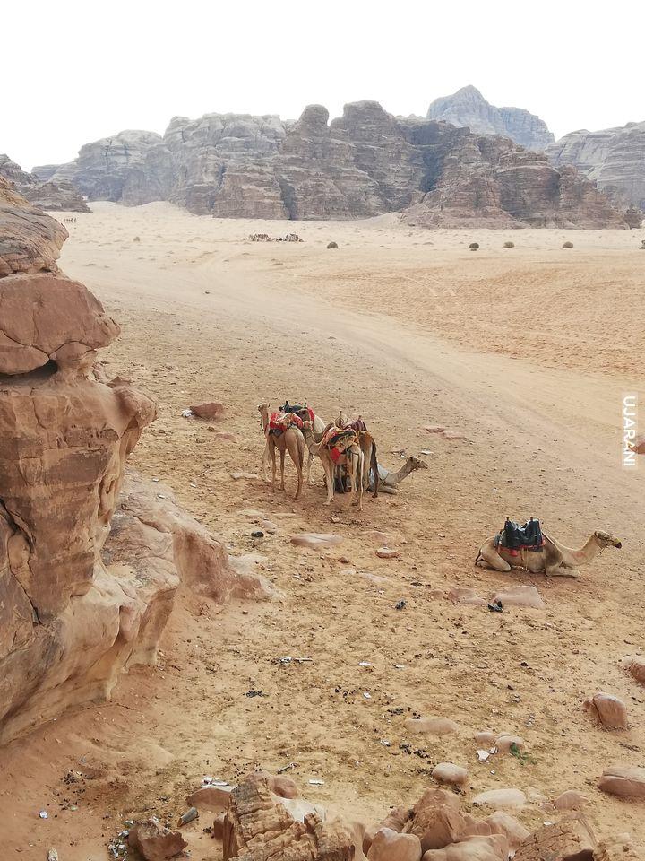 Pustynia w Jordania