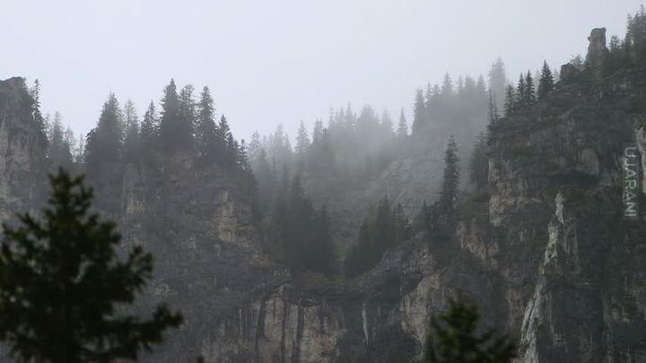 Mgielnie