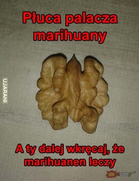 Marichuanen