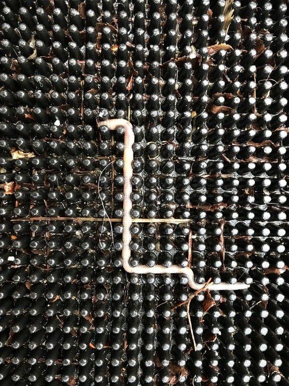 Tetris Bug