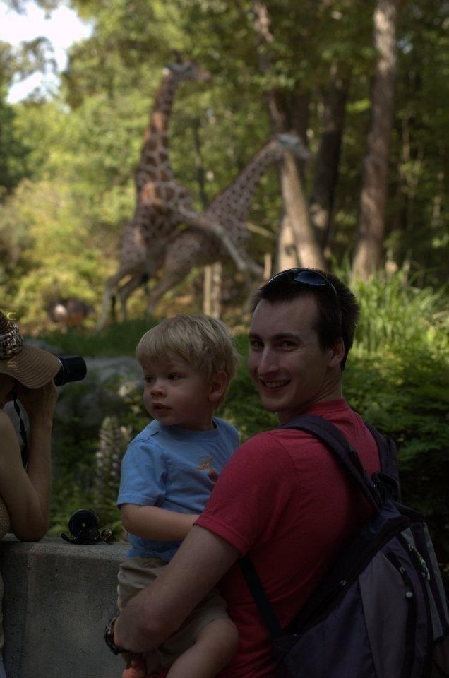 Żyrafek reprodukcja