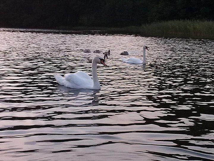 Weekendowe pływanie łódką i takie oto widoki :D