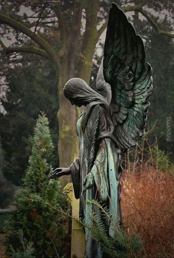 Kamienne anioły