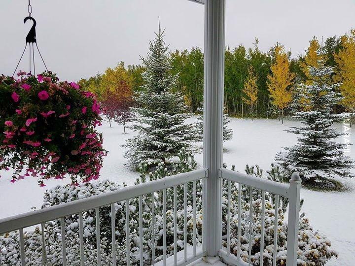 Trzy pory roku na jednym zdjęciu