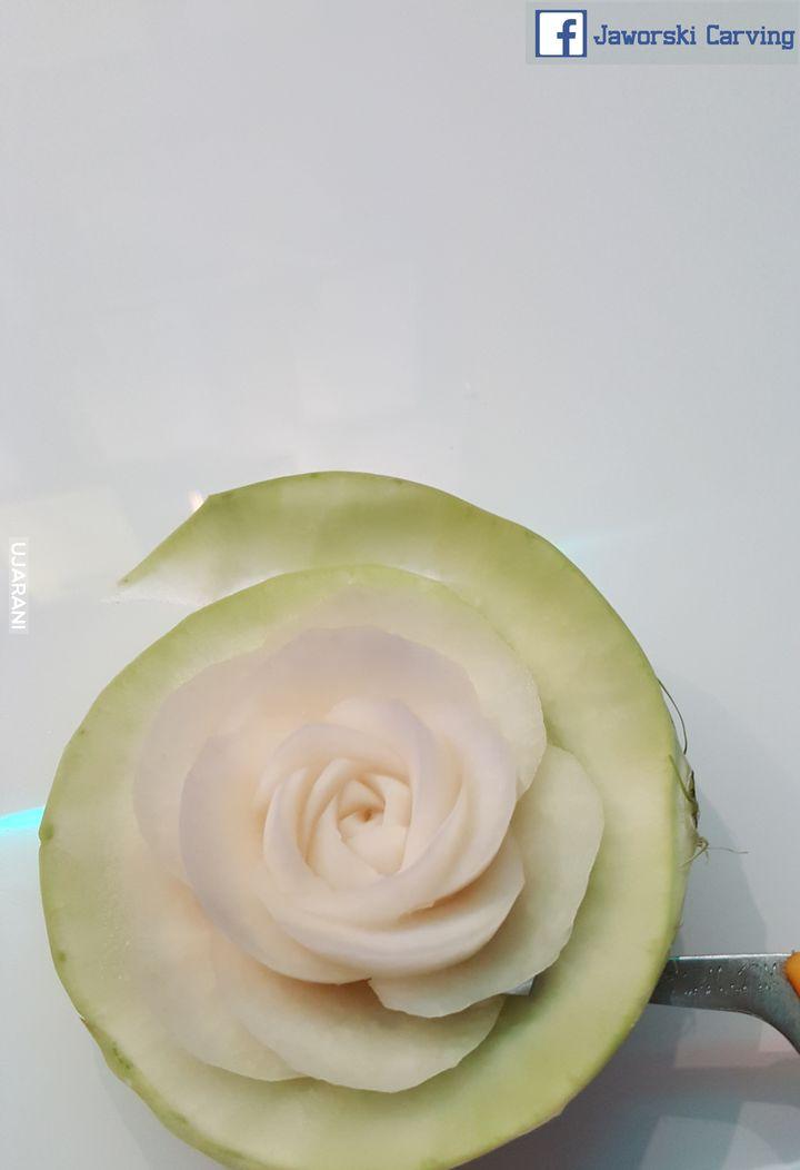 Róża :D