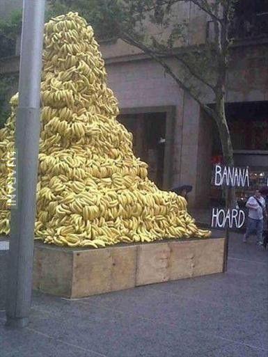 Zbiórka bananów.