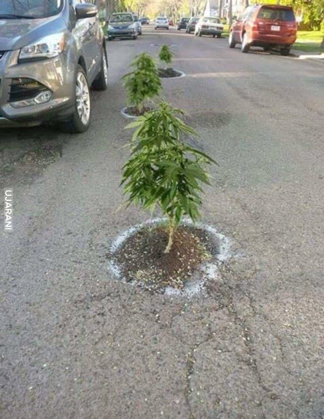 Łatanie dziur w drogach w Kaliforni