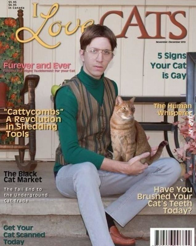 Cat licks magazine covers