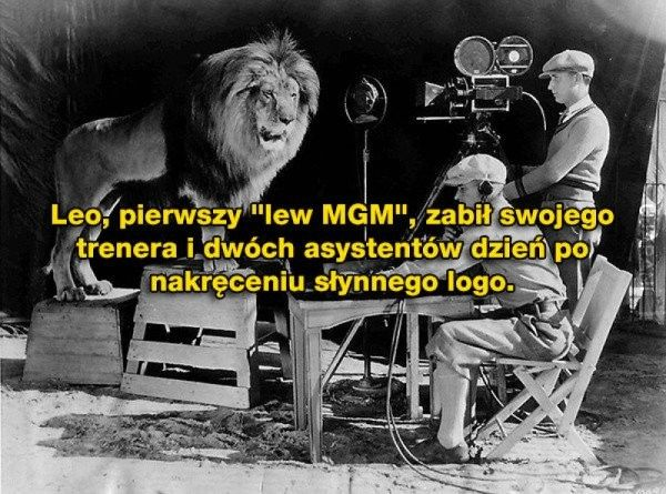 MGM..ciekawostka..