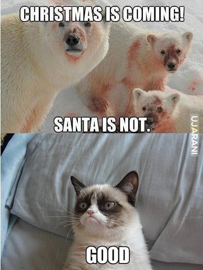 chrismtas is coming santa not
