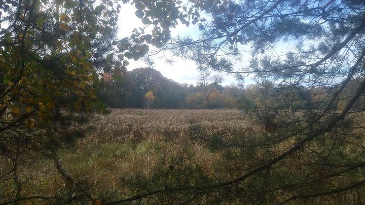 Nieubłagalnie jesień. Choć piękna, ciepła
