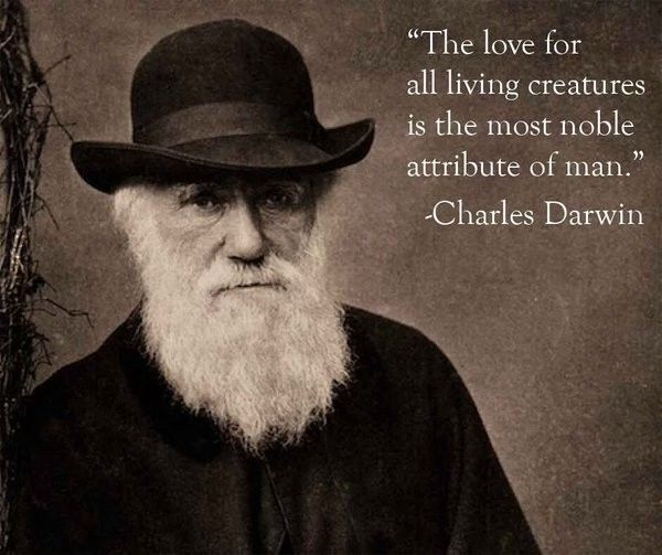 Happy birthday Charles Darwin