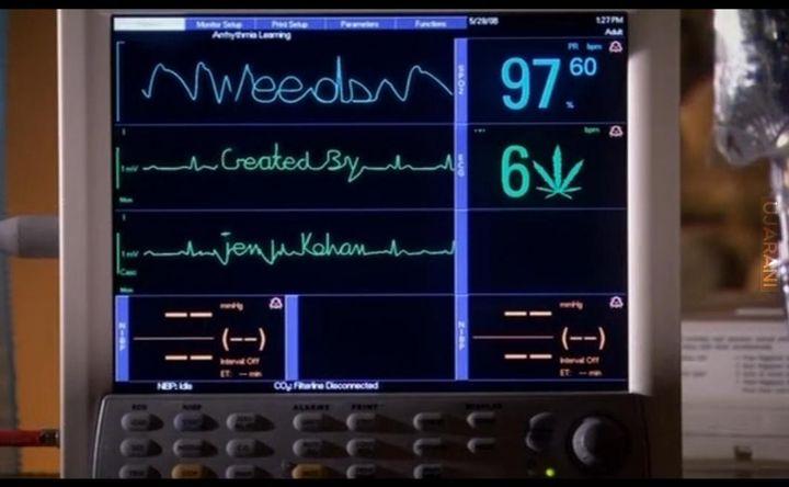 """""""Weeds"""" Created By : Jenji Kohan"""
