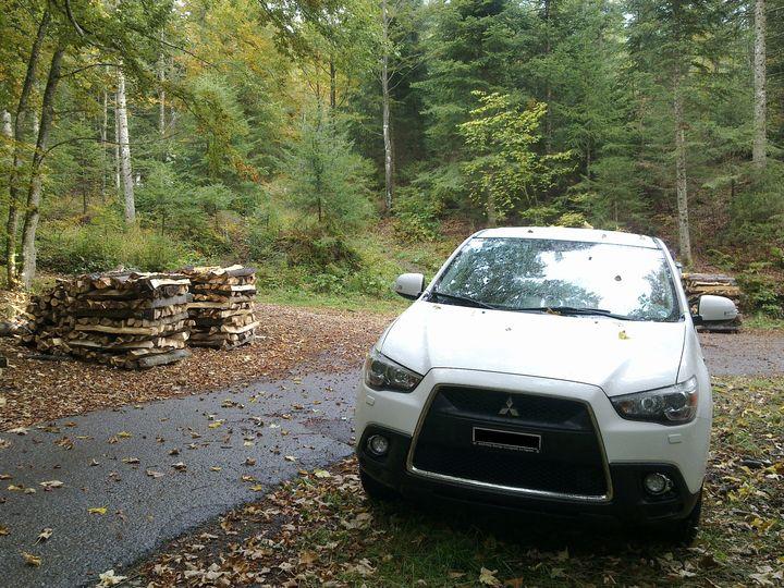 Mój misiek w lesie:)