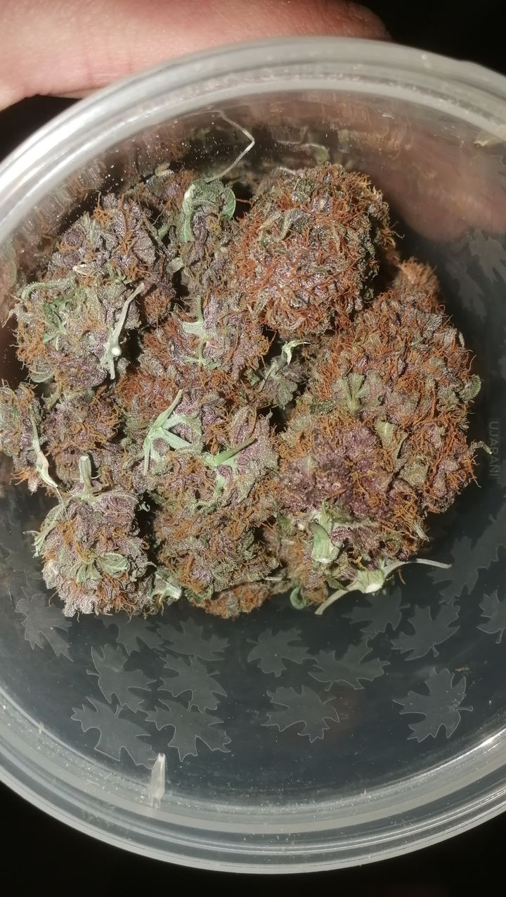 Strawberry Nuggets
